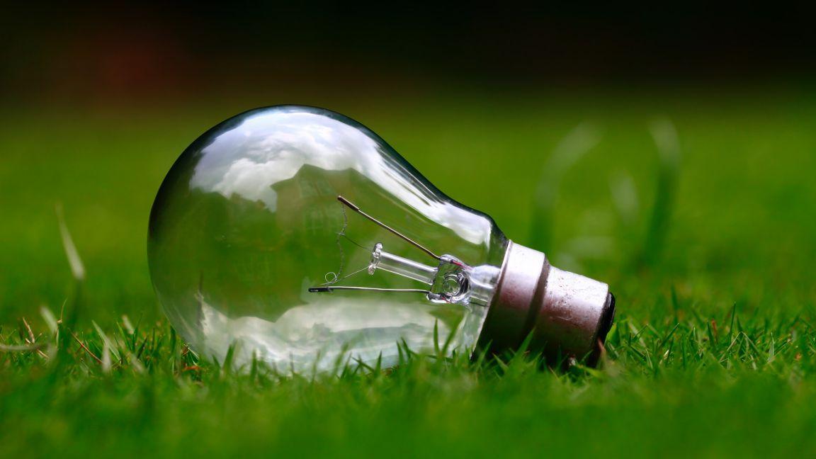 Transparent bulb   The Healthier Home