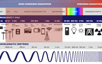 The 4 Types of EMF's